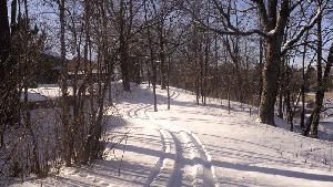 trail_report3